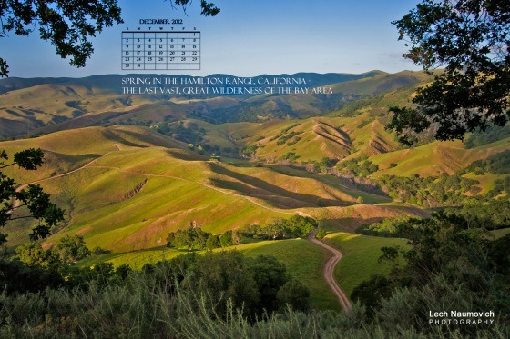 Dec 2012 Calendar desktop Hamilton copy