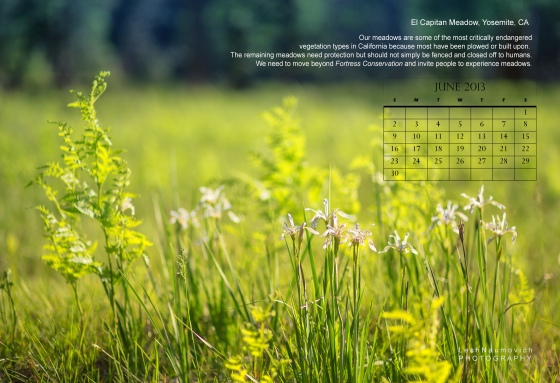 June 2013 Calendar desktop El Cap meadow - Lech Naumovich Photography