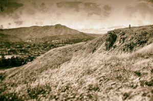 Coastal Prairie habitat of Ring Mountain - researcher collecting paintbrush samples.