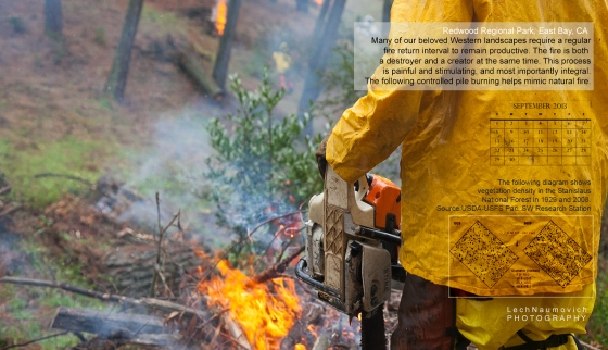 September 2013 Calendar desktop Fire ecology - Lech Naumovich Photography 2