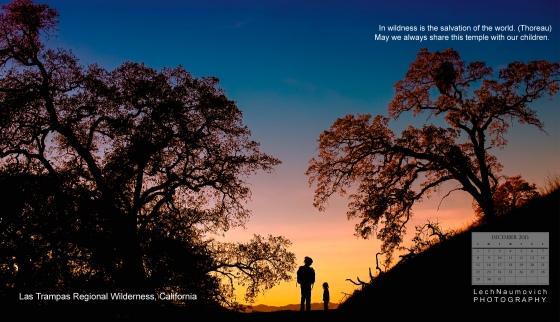 December 2013 Calendar desktop Wildness and Family - Lech Naumovich Photography
