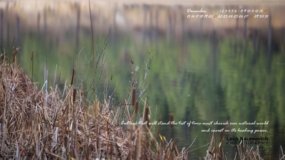 December 2014 Calendar desktop Culture and Conservation 2 - Lech Naumovich Photography