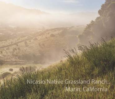 Nicasio Grasslands Ranch PDF draft - lechphoto - all rights reserved_Page_01